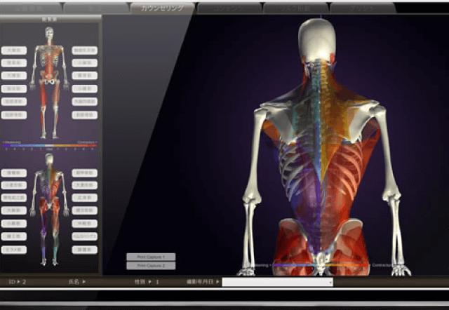 骨格のゆがみや筋肉の緊張・弱化が、高密度3DCGで一目瞭然